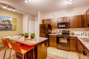 Blu Corporate Apartment 456984 Fort Collins 12