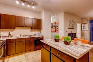 Blu Corporate Apartment 456984 Fort Collins 13
