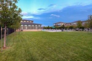 Blu Corporate Apartment 456984 Fort Collins 6