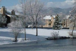 Fort Collins Corporate Apartment 9443 11