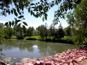 Fort Collins Corporate Apartment 9443 6