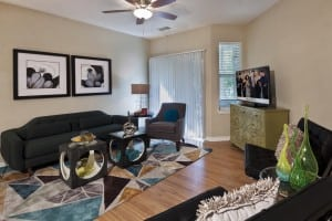 Furnished Apartments 5