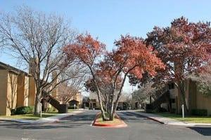 Amarillo Corporate Apartment 893422 Blu Corporate Housing 1