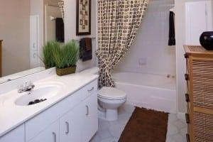 Austin Furnished Apartment Blu Corporate Housing 1