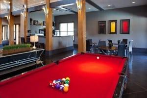 Austin Furnished Apartment Blu Corporate Housing 7