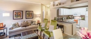 Austin TX Corporate Apartment Blu 5