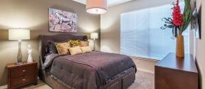 Austin TX Corporate Apartment Blu 9
