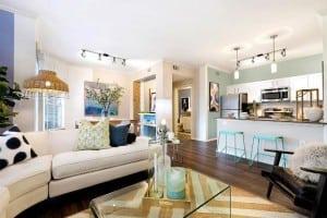 Austin Texas Corporate Apartment 9834 Blu Corporate Housing 3