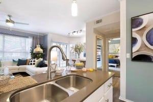 Austin Texas Corporate Apartment 9834 Blu Corporate Housing 4