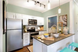 Austin Texas Corporate Apartment 9834 Blu Corporate Housing 5