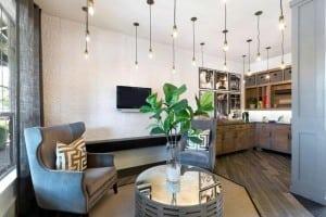 Austin Texas Corporate Apartment 9834 Blu Corporate Housing 7