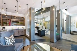Austin Texas Corporate Apartment 9834 Blu Corporate Housing 8