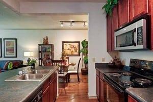 Beaumont TX Corporate Apartment 485745 Blu 12