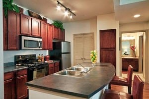 Beaumont TX Corporate Apartment 485745 Blu 13