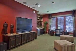 Beaumont TX Corporate Apartment 485745 Blu 3