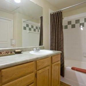 Blu Corporate Housing of Austin Texas Rental 9834324 12