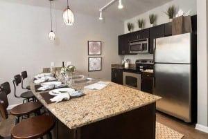 Blu Furnished Fort Worth Downtown Rental 1