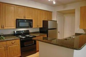 Blu Furnished Housing Irving TX 4