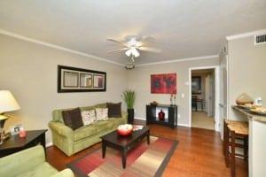 Corporate Apartment in Auburn AL Blu 2