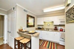 Corporate Apartment in Auburn AL Blu 7