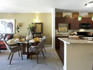 Furnished Apartment Irving TX 3