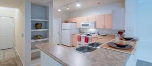 Irving TX Corporate Apartment Blu 2