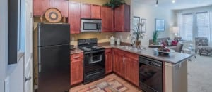 Irving Texas Blu Furnished Apartment 10