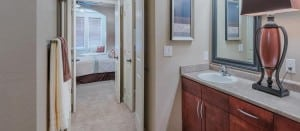 Irving Texas Blu Furnished Apartment 6