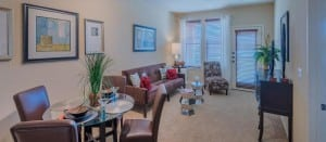 Irving Texas Blu Furnished Apartment 9