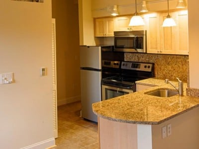 Richmond VA Blu Furnished Unit 2312 5