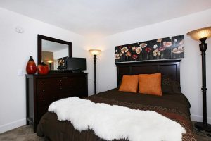 Furnished Housing Rochester 2