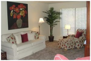 Fully Furnished 2