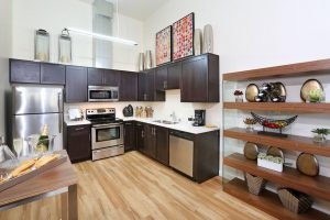 Fully Furnished Apartment 9